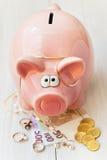 Cerdo del ahorro Fotografía de archivo libre de regalías