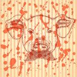 Cerdo del bosquejo con el bigote, fondo del vector Fotografía de archivo