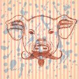 Cerdo del bosquejo con el bigote, fondo del vector Imágenes de archivo libres de regalías