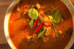 Cerdo del curry del coco Fotografía de archivo