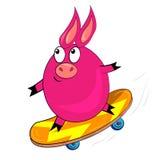 Cerdo del deporte de la historieta. imagen animal aislada Foto de archivo