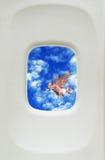 Cerdo del vuelo Fotografía de archivo libre de regalías
