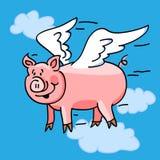 Cerdo del vuelo Imagenes de archivo