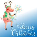 Cerdo divertido con el saludo de la Navidad de las bengalas imágenes de archivo libres de regalías