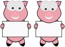 Cerdo dos con un cartel Fotos de archivo libres de regalías