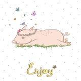 Cerdo elegante 1 Foto de archivo libre de regalías