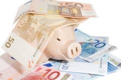 Cerdo en dinero Fotografía de archivo libre de regalías