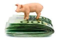 Cerdo en el dinero euro de los billetes de banco Imagenes de archivo
