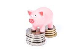Cerdo en monedas Fotografía de archivo