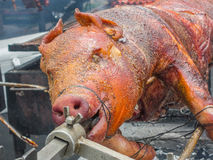 Cerdo en un rotisserie Fotos de archivo libres de regalías