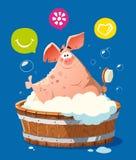 Cerdo feliz de la sonrisa en el lavado de la bañera del baño Fotografía de archivo