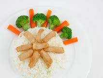 Cerdo frito tailandés en el arroz fotografía de archivo libre de regalías