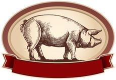 Cerdo gráfico
