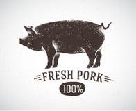 Cerdo gráfico Fotografía de archivo