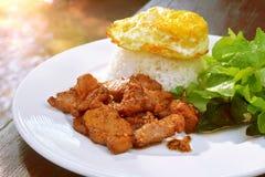Cerdo gralic frito servido con arroz del jazmín Foto de archivo libre de regalías
