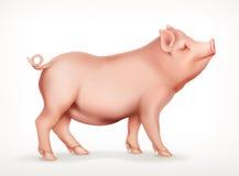 Cerdo, icono del vector stock de ilustración