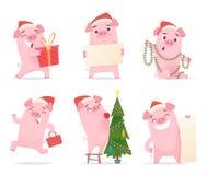 Cerdo lindo Caracteres 2019 del vector del cerdo del cochinillo del verraco de las mascotas de la historieta de la celebración de ilustración del vector