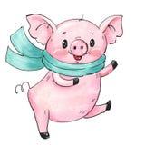 Cerdo lindo de la historieta imagenes de archivo