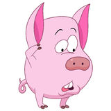 Cerdo lindo de la historieta Fotos de archivo