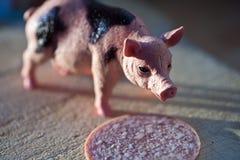 Cerdo miniatura con una rebanada de saussage imagen de archivo libre de regalías
