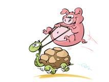 Cerdo que monta una tortuga Imagenes de archivo