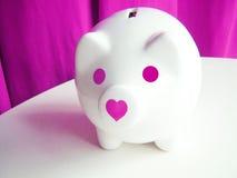Cerdo rosado Fotos de archivo libres de regalías