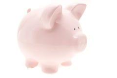 Cerdo rosado del dinero Imagen de archivo libre de regalías