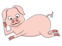Cerdo rosado lindo Fotos de archivo libres de regalías