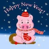 Cerdo, símbolo 2019, Año Nuevo, día de fiesta El cerdo lindo hace punto un calcetín stock de ilustración