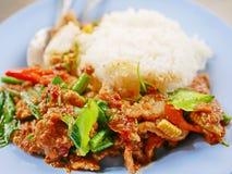 Cerdo sofrito con la goma roja Moo Pad Prik Gaeng del curry con el arroz blanco imagenes de archivo