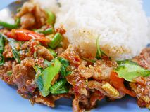 Cerdo sofrito con la goma roja Moo Pad Prik Gaeng del curry con el arroz blanco imágenes de archivo libres de regalías