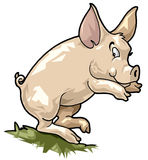 Cerdo sonriente. Estilo de la historieta Fotos de archivo