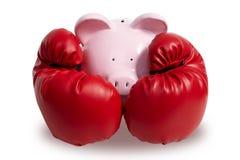Cerdo y boxeo-guante Imagen de archivo libre de regalías