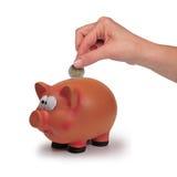Cerdo y dinero Fotos de archivo