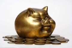 Cerdo y money_18 Imagenes de archivo