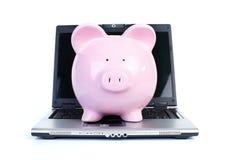 Cerdo y ordenador portátil Fotos de archivo libres de regalías