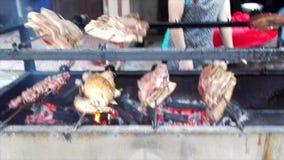 Cerdo y pato de carne asada en la estufa de madera almacen de metraje de vídeo