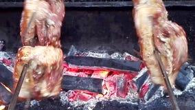 Cerdo y pato de carne asada en la estufa de madera metrajes
