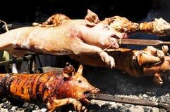 Cerdos asados Imágenes de archivo libres de regalías