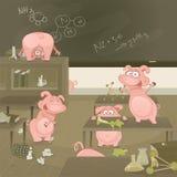 Cerdos de la ilustración del vector que van salvajes Imagen de archivo libre de regalías