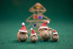 Cerdos que llevan el sombrero de la Navidad Foto de archivo