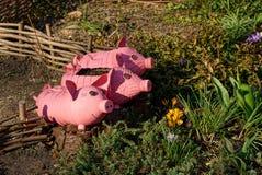 Cerdos rosados de las botellas plásticas bajo la forma de macetas en una cama de flor Imagen de archivo libre de regalías