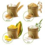 Cereais agrícolas ajustados ilustração royalty free