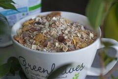 Cereais da manhã Foto de Stock