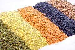 Cereais diferentes no branco Imagem de Stock