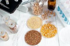 Cereais no prato de petri para a análise no fundo de madeira Imagens de Stock Royalty Free
