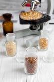 Cereais nos tubos de ensaio de vidro para a análise no fundo de madeira Fotos de Stock Royalty Free