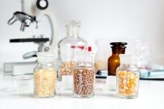 Cereais nos tubos de ensaio de vidro para a análise no laboratório fotos de stock
