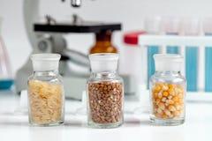Cereais nos tubos de ensaio de vidro para a análise no laboratório foto de stock royalty free