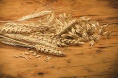 Cereais variados Fotografia de Stock